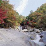 鹿川渓谷(ししがわけいこく)紅葉時期 例年11月頃