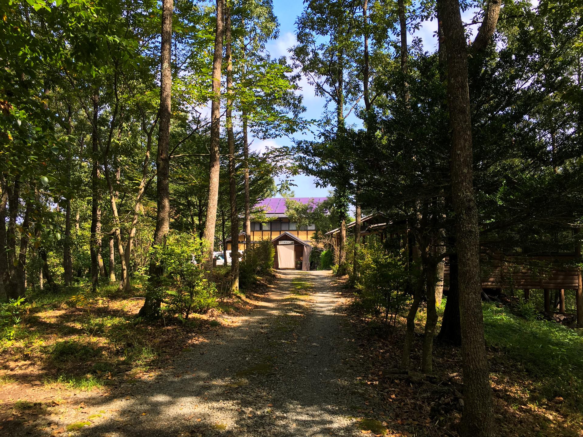 森の中の レストラン ホテル 旅館 宿泊 サリモス