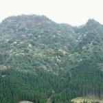 冠山 (かんむりやま) 写真は春