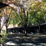 関之尾緑の村(せきのお みどりのむら)  紅葉時期例年11月中旬