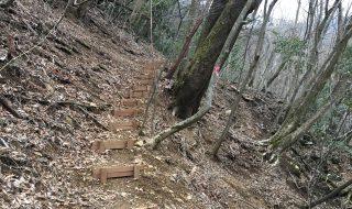急な勾配の場所は、歩きやすい階段があります。